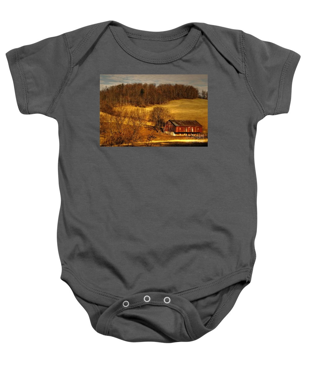 Barn Baby Onesie featuring the photograph Sweet Sweet Surrender by Lois Bryan