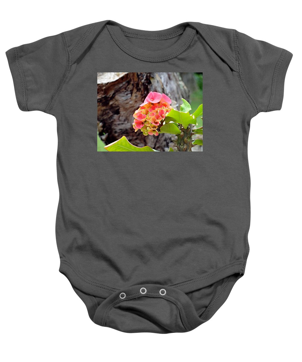Pink Baby Onesie featuring the photograph Swirls Of Pink by Robert Meyers-Lussier