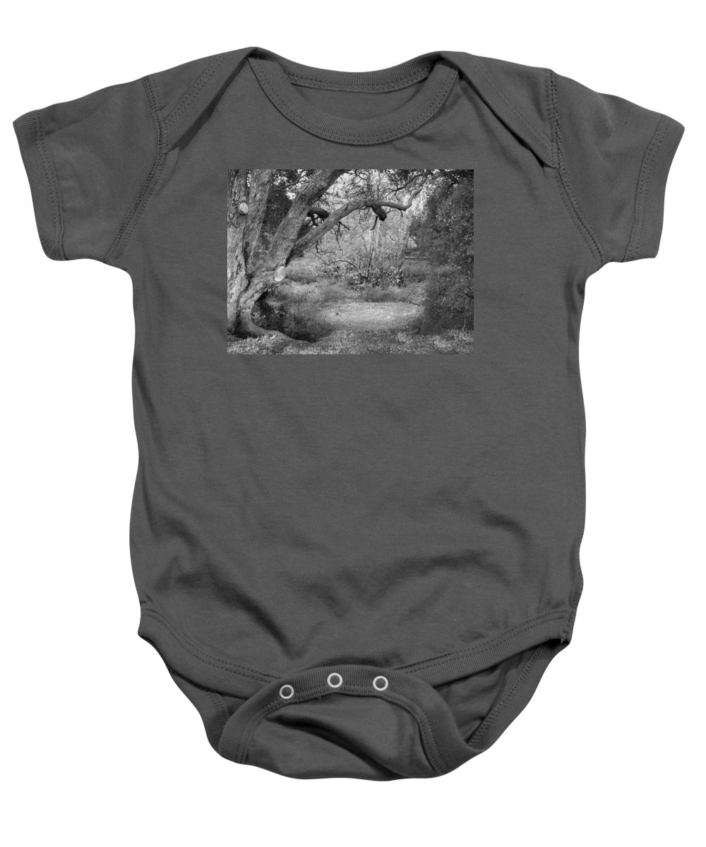 Landscape Baby Onesie featuring the photograph Sycamore Grove Black And White by Karen W Meyer