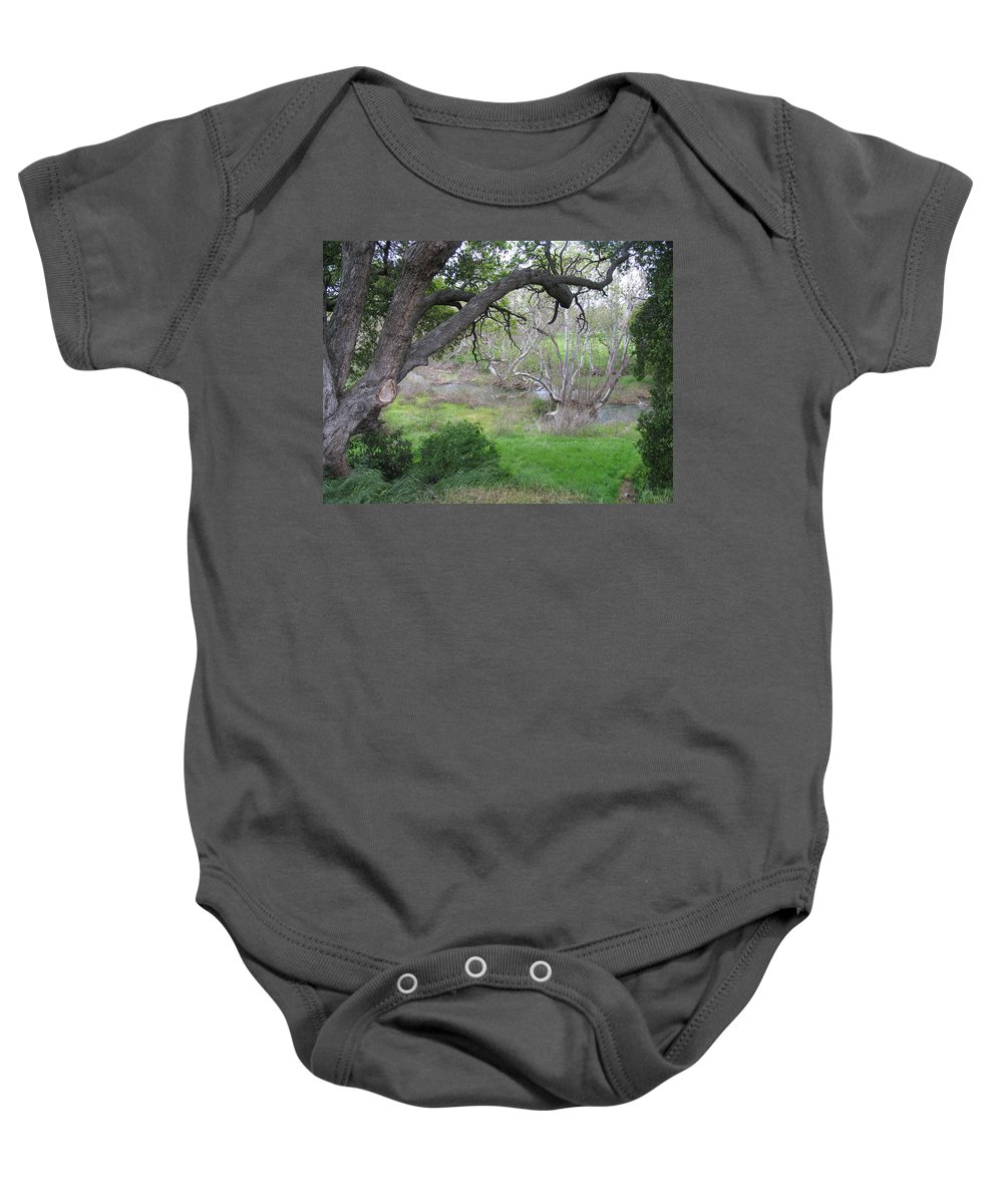 Landscape Baby Onesie featuring the photograph Sycamore Grove by Karen W Meyer