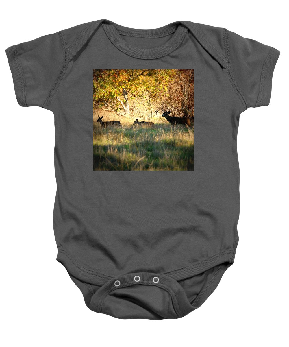 Deer Baby Onesie featuring the photograph Sycamore Grove Series 10 by Carol Groenen