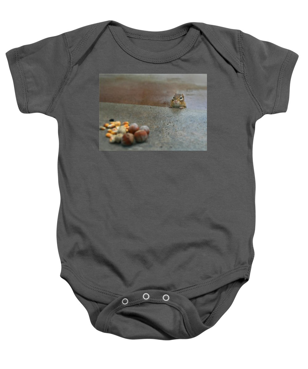 Chipmunk Baby Onesie featuring the photograph Temptation by Lori Deiter