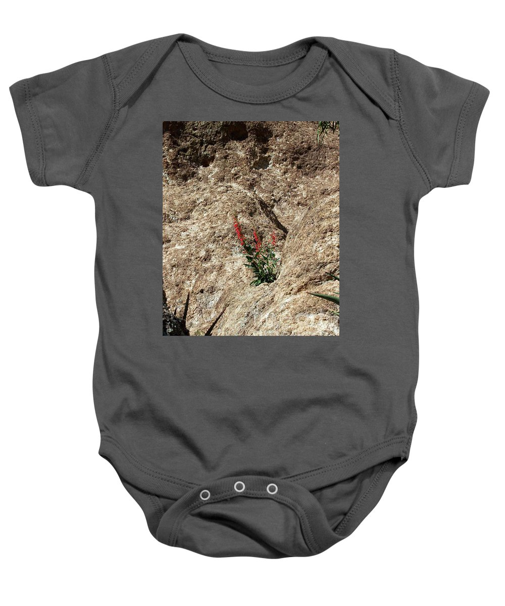 Wildflowers; Flowers Baby Onesie featuring the photograph Tenacity by Kathy McClure