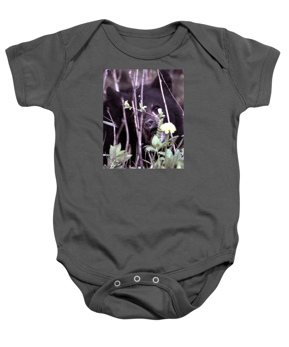 Bearcub Black Bear Dandelion Nature Wildlife Grass Cute  Baby Onesie featuring the photograph The Bearcub And The Dandelion by Bastiaan De Peuter
