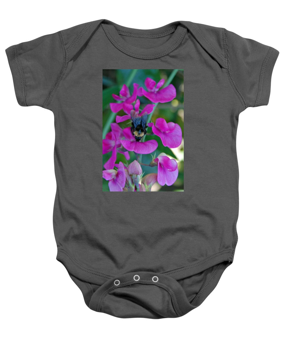 Bee Baby Onesie featuring the photograph The Bee And The Flowers by Carol Eliassen