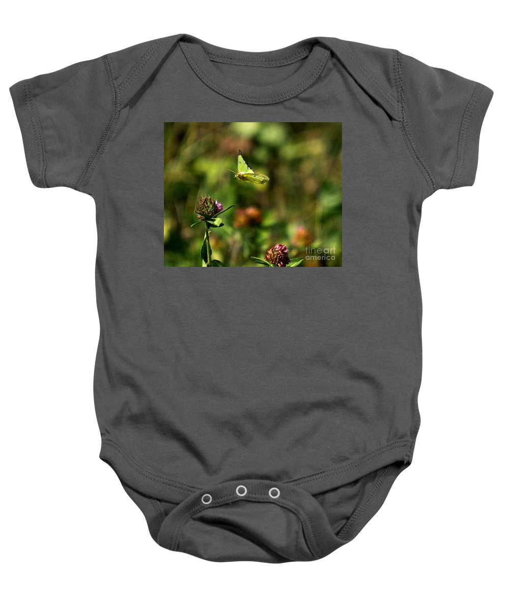 Related Tags: Baby Onesie featuring the photograph The Butterfly Dance-4 by Robert Pearson