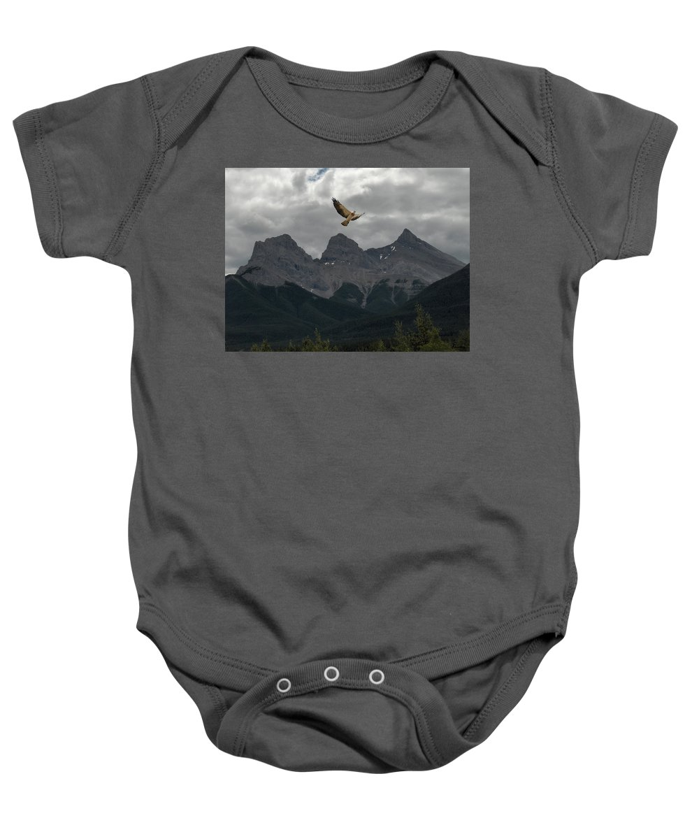 Hawk Mountains Trees Woods Banff Alberta Wild Bird Hunter Flying Three Sisters Baby Onesie featuring the photograph The Calling by Andrea Lawrence