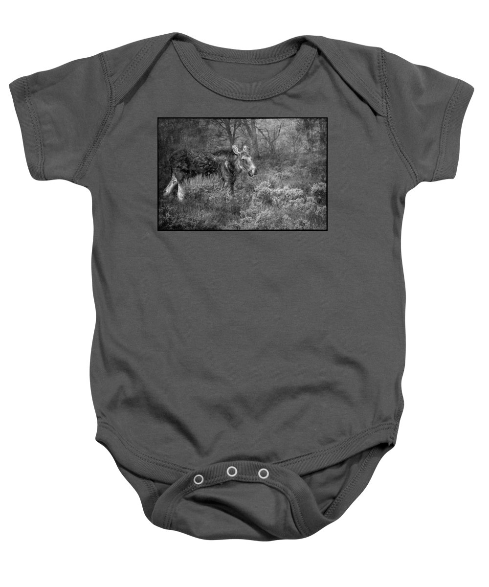 Moose Baby Onesie featuring the photograph The Calm Of A Moose Bw by Belinda Greb