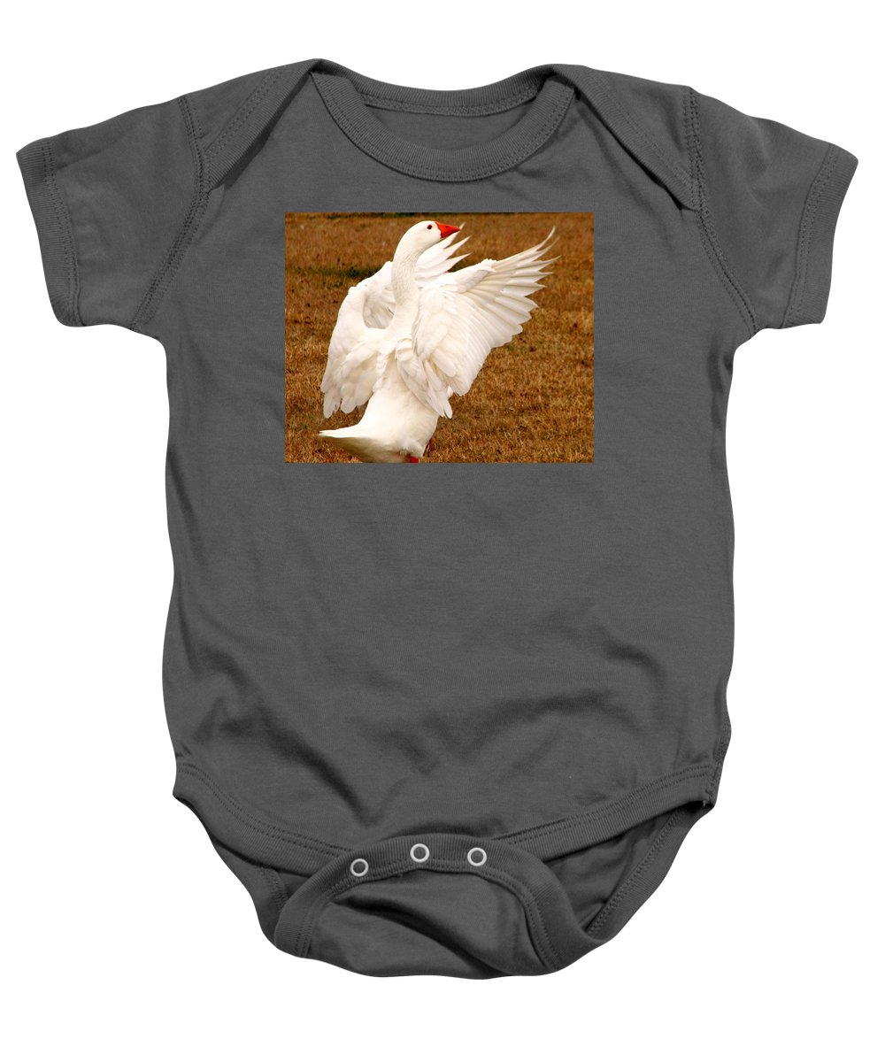 Geese Baby Onesie featuring the photograph The Conductor by J M Farris Photography