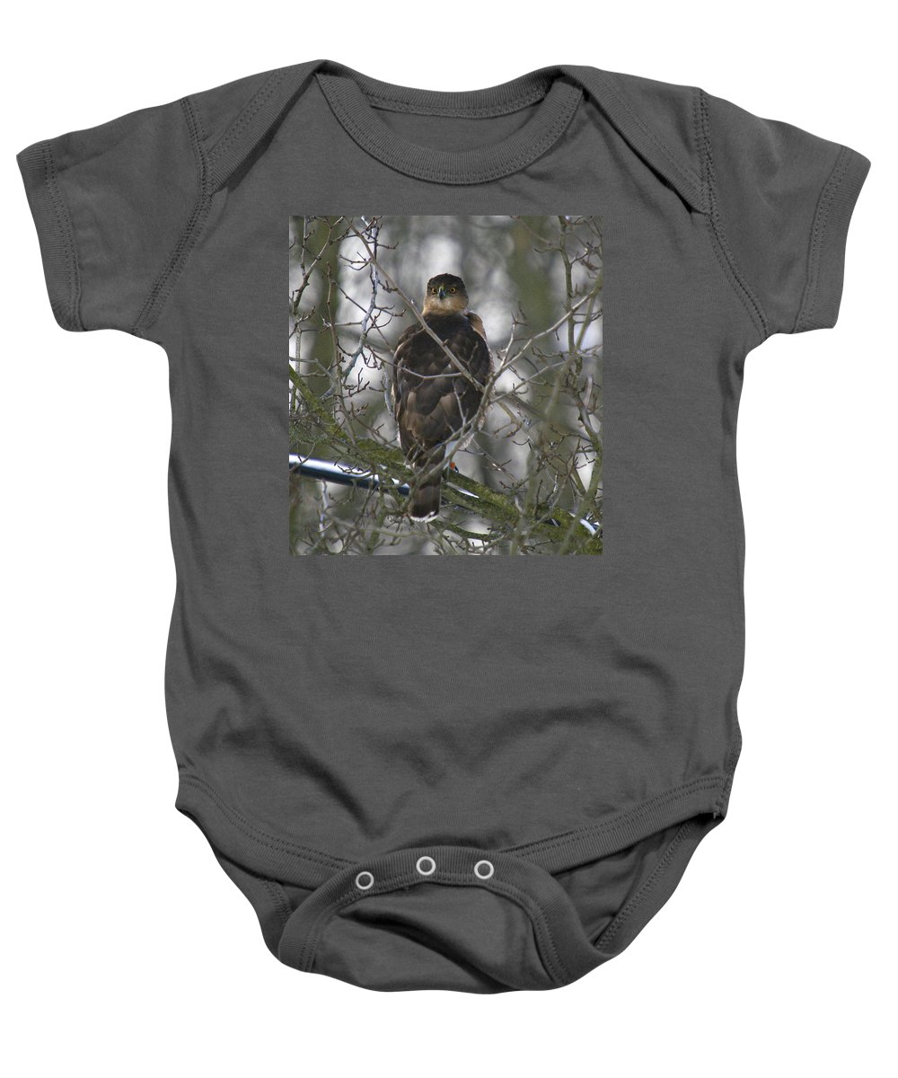 Bird Baby Onesie featuring the photograph The Hawks Have Eyes by Robert Pearson