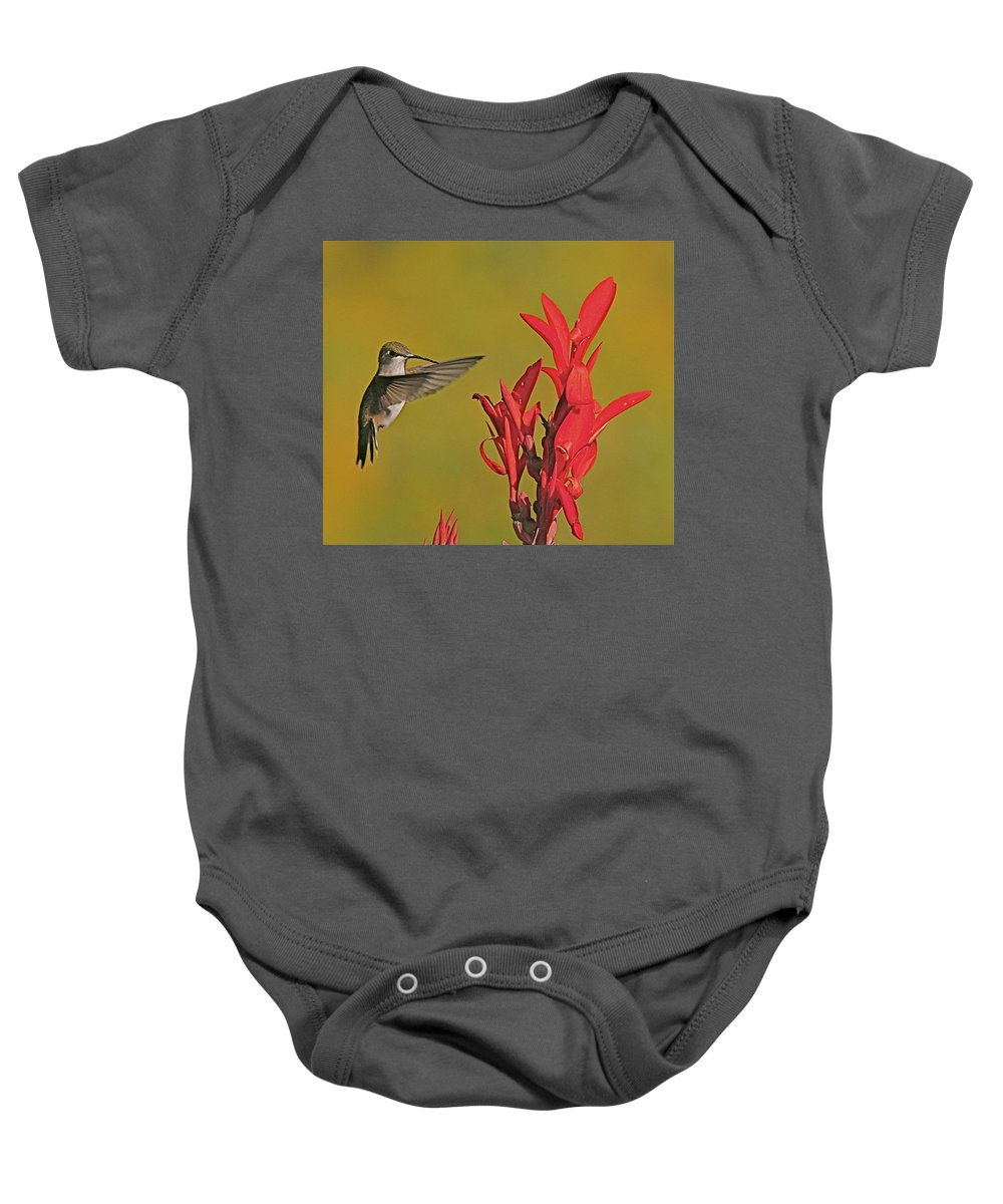 Humming Bird Baby Onesie featuring the photograph The Hummer by Robert Pearson