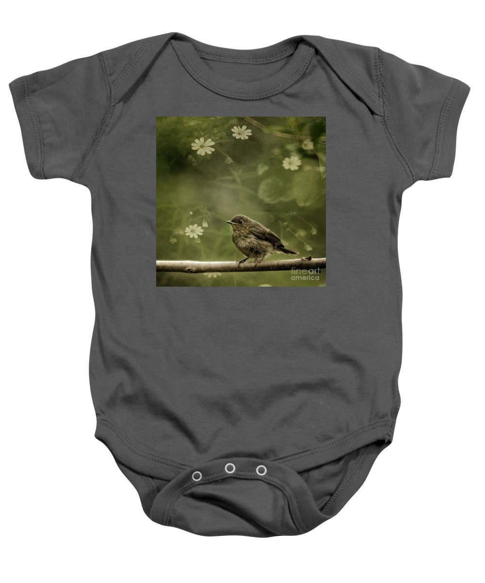 Robin Baby Onesie featuring the photograph The Little Robin by Angel Ciesniarska