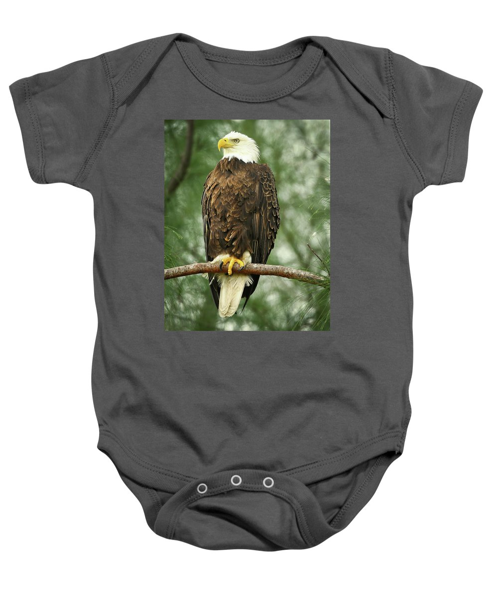 Bald Eagle Baby Onesie featuring the photograph The Majestic by Dennis Goodman
