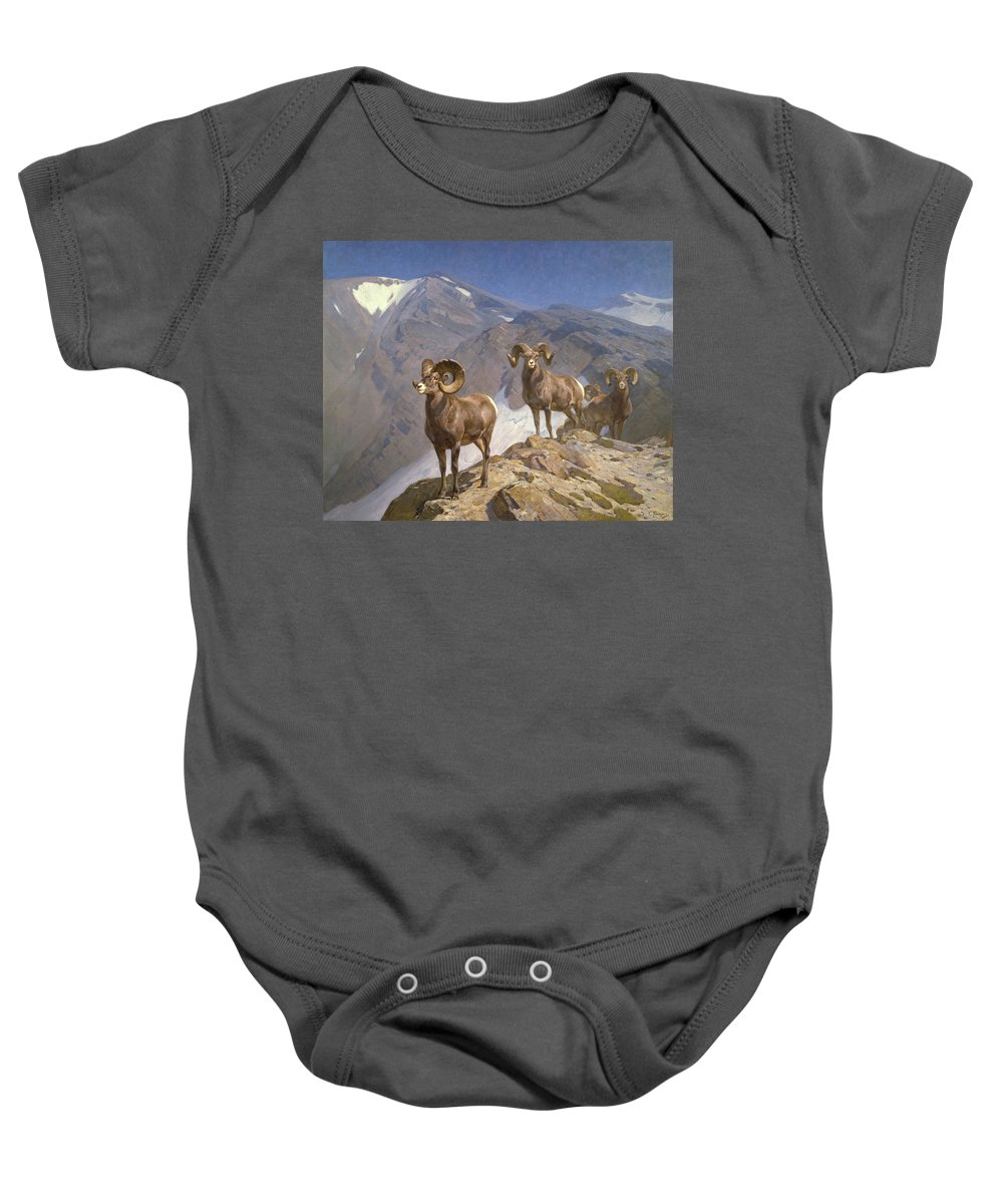 Rocky Mountain Bighorn Sheep Baby Onesies