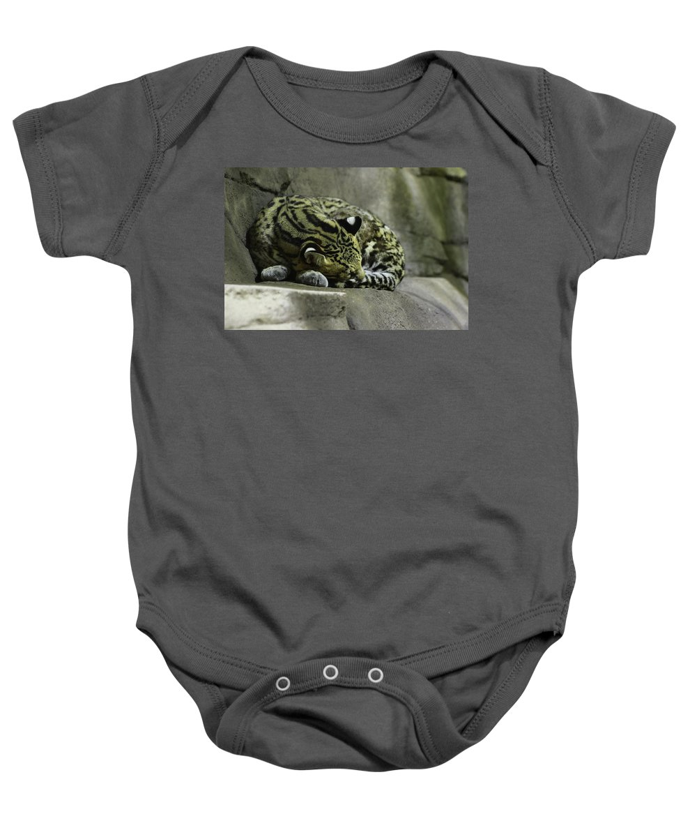 Cat Baby Onesie featuring the photograph The Napping Rock by Laddie Halupa