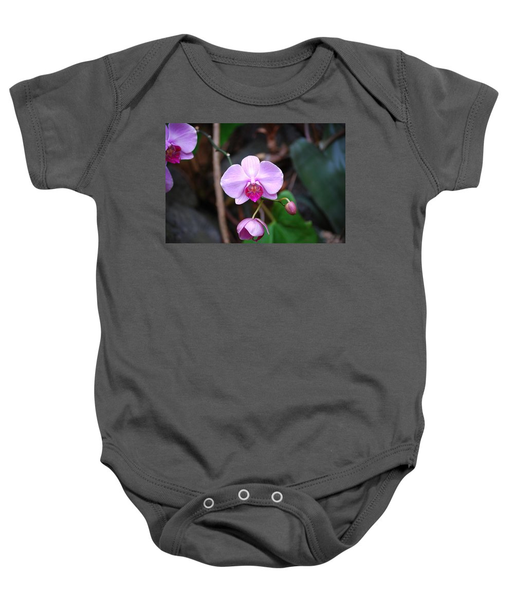 Orchid Baby Onesie featuring the photograph The Orchid by Eric Liller