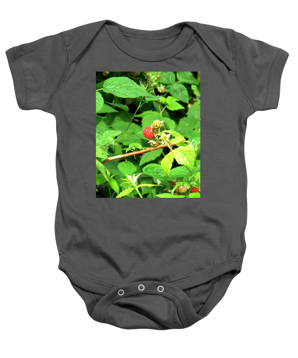Rasberry Baby Onesie featuring the photograph The Rasberry Patch by Ian MacDonald