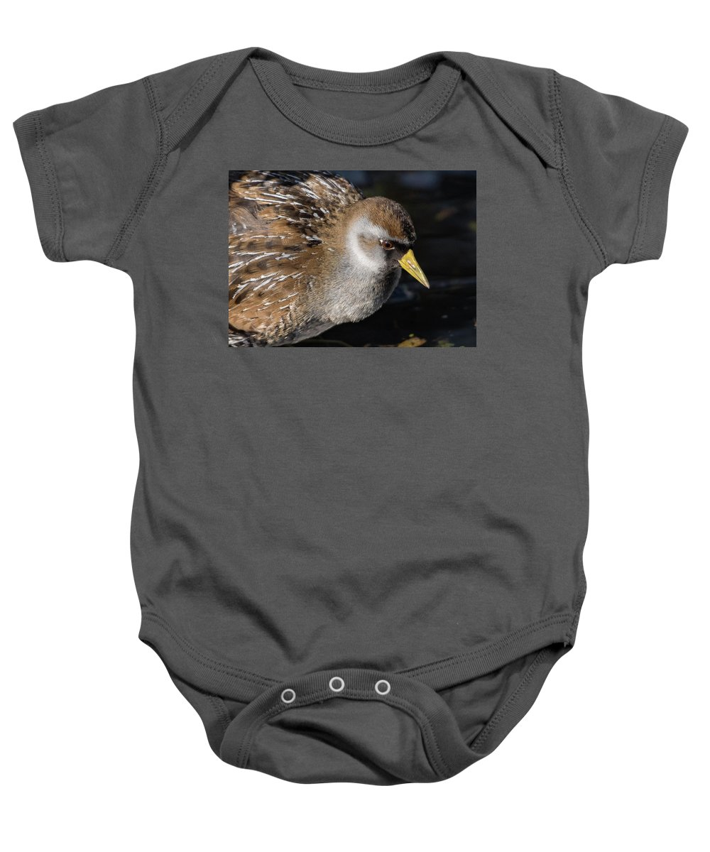 Sora Baby Onesie featuring the photograph The Sora by MCM Photography