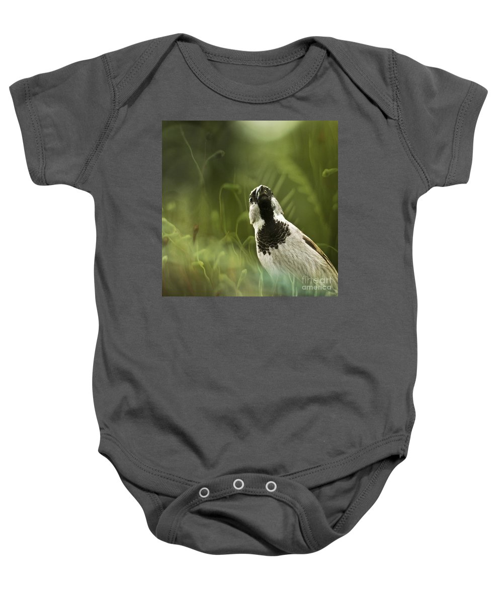Sparrow Baby Onesie featuring the photograph The Sparrow by Angel Ciesniarska
