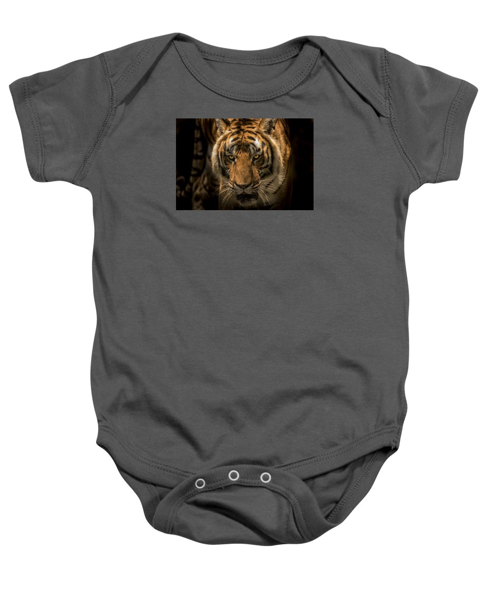 Tiger Baby Onesie featuring the photograph The Savage Found Me by Francisco Gomez