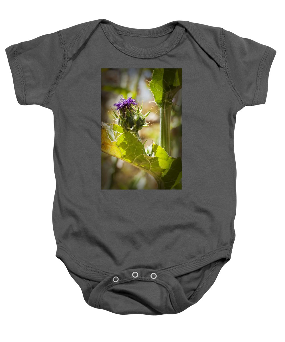 Thistle Baby Onesie featuring the photograph Thistle 2 by Kelley King