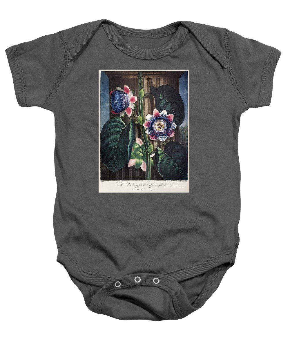 1802 Baby Onesie featuring the photograph Thornton: Passion-flower by Granger
