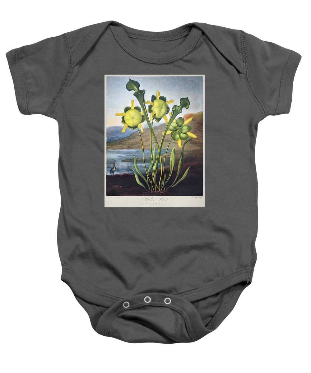 1803 Baby Onesie featuring the photograph Thornton: Pitcher Plant by Granger