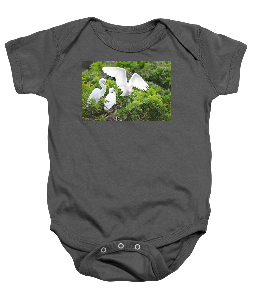 Birds Baby Onesie featuring the photograph Three Birds Of A Feather Flock Together by Patricia Twardzik