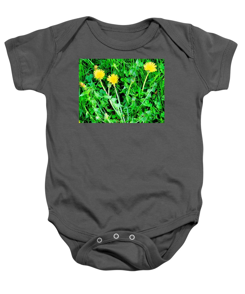 Dandylions Baby Onesie featuring the photograph Three Tenders by Ian MacDonald