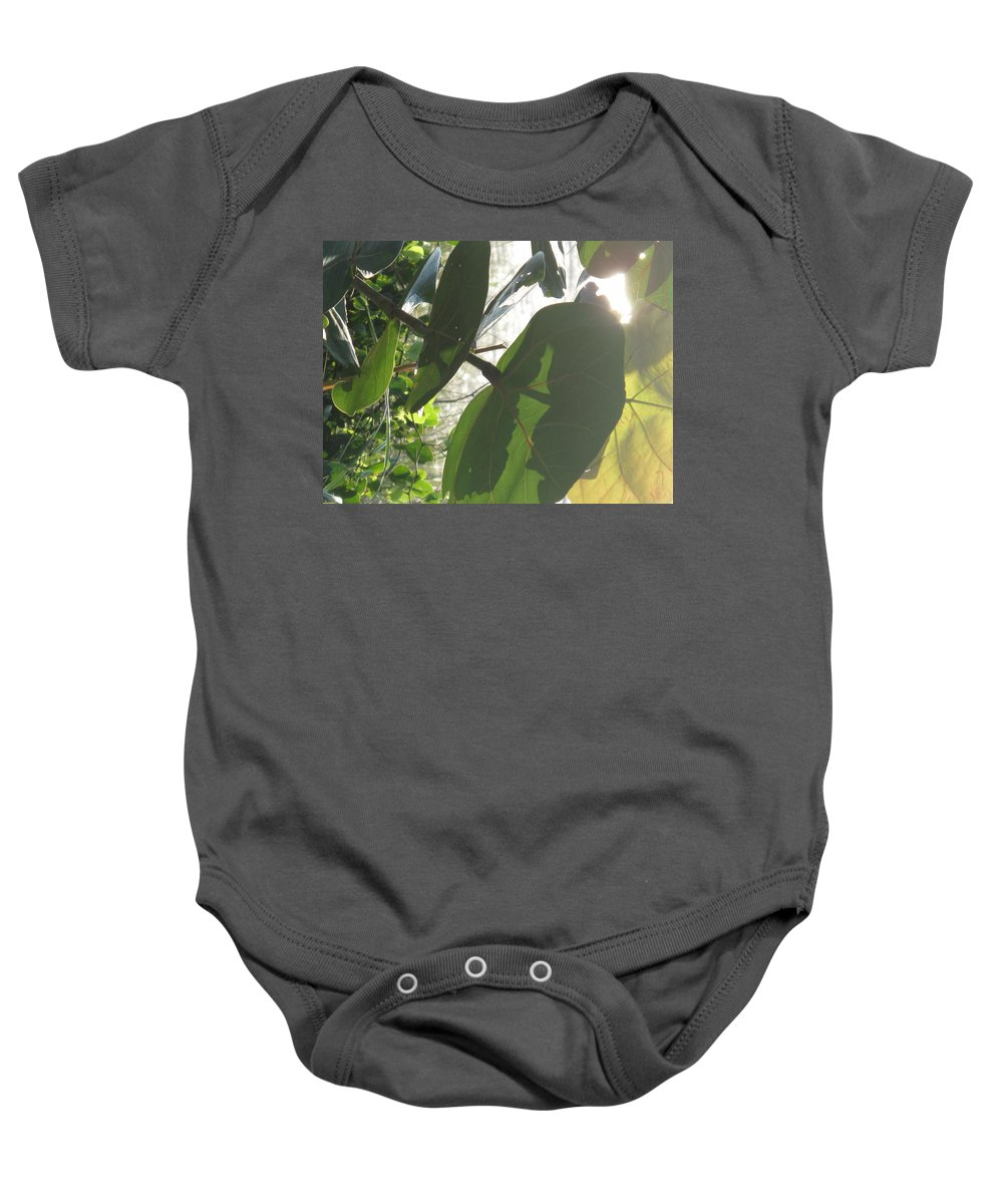 Sea Baby Onesie featuring the photograph Through The Sea Grape Leaves by Ian MacDonald
