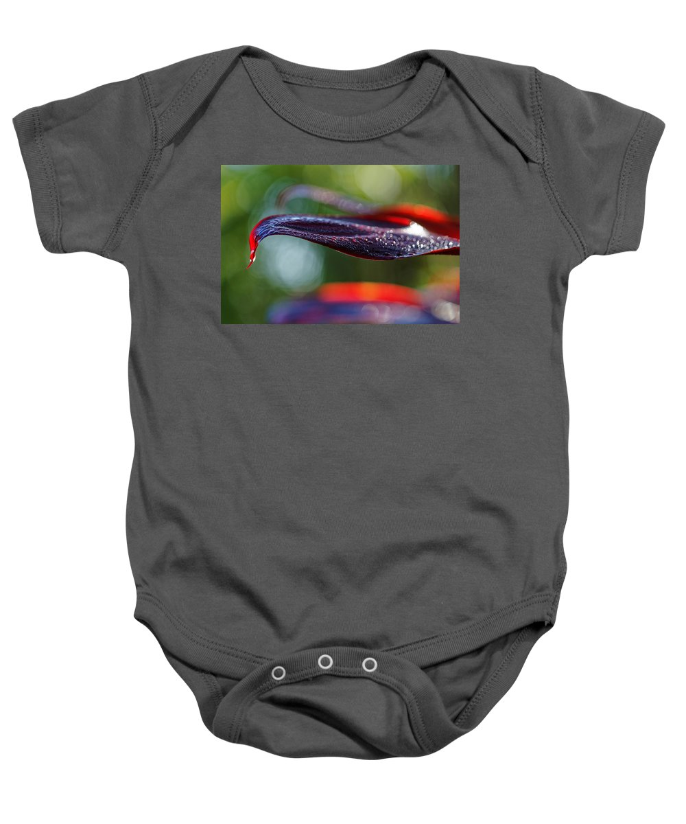 Baby Onesie featuring the photograph Ti by Wayne Wilkinson