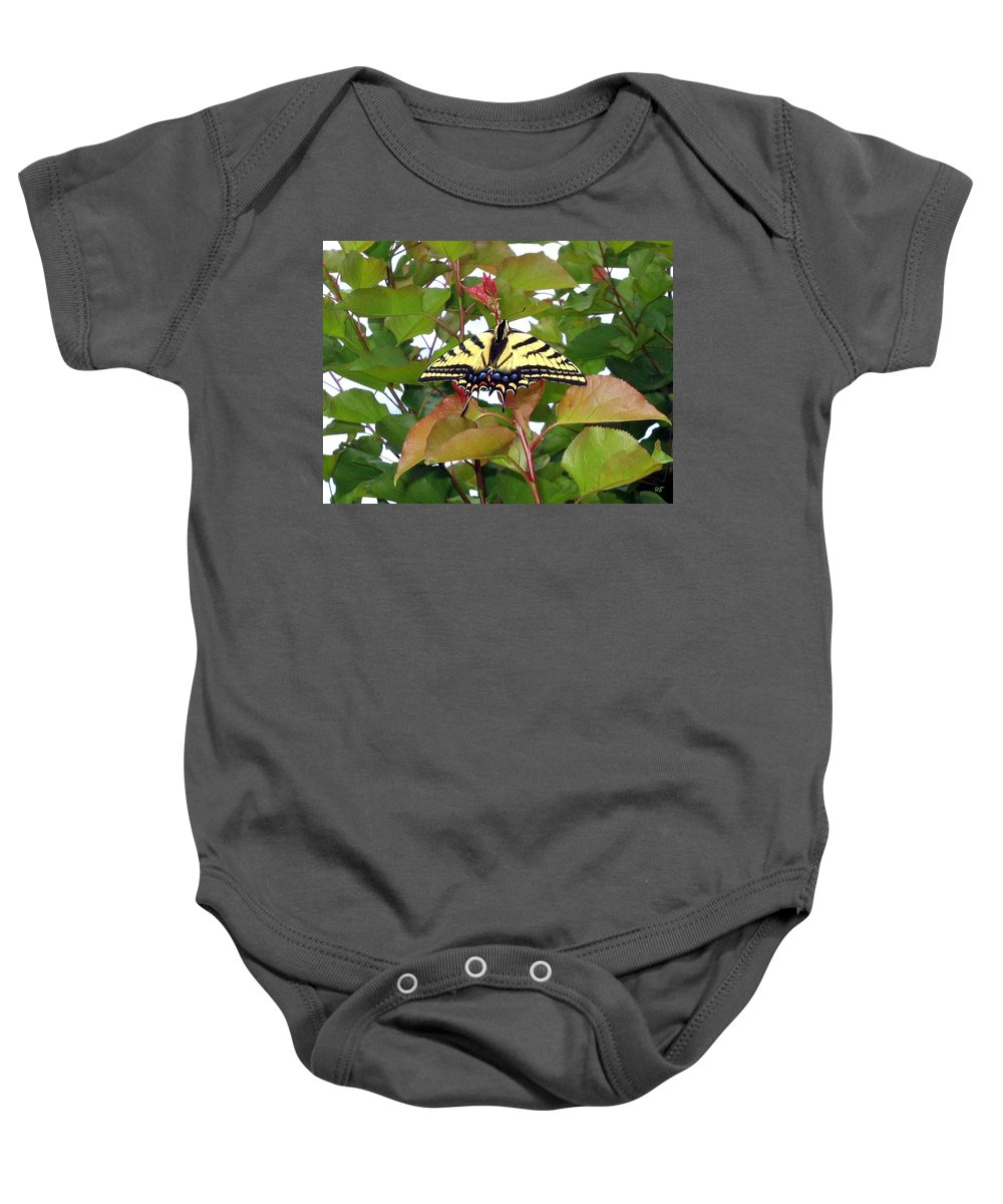 Butterfly Baby Onesie featuring the photograph Tiger Swallowtail Butterfly by Will Borden