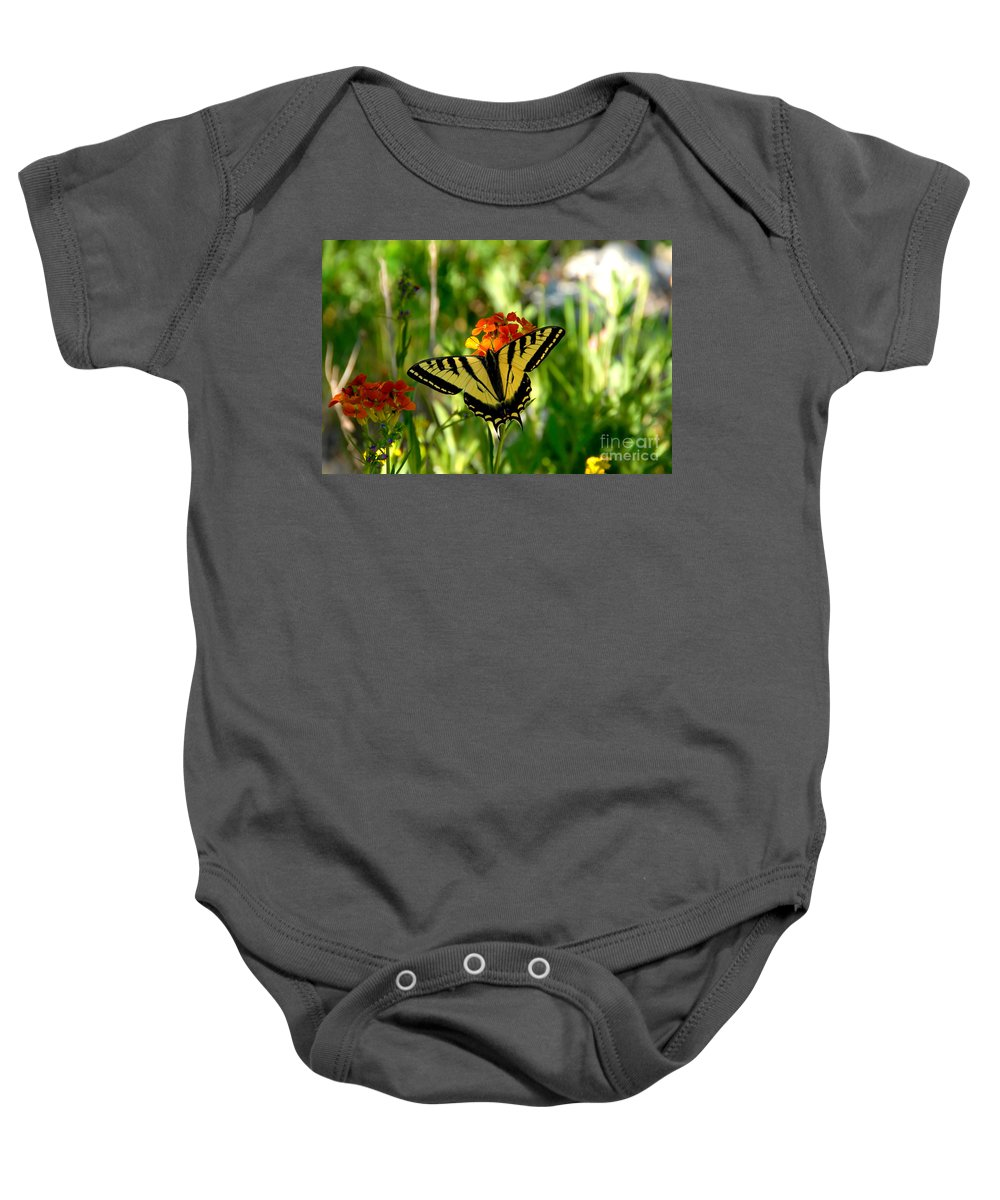 Tiger Tail Butterfly Baby Onesie featuring the photograph Tiger Tail Beauty by David Lee Thompson