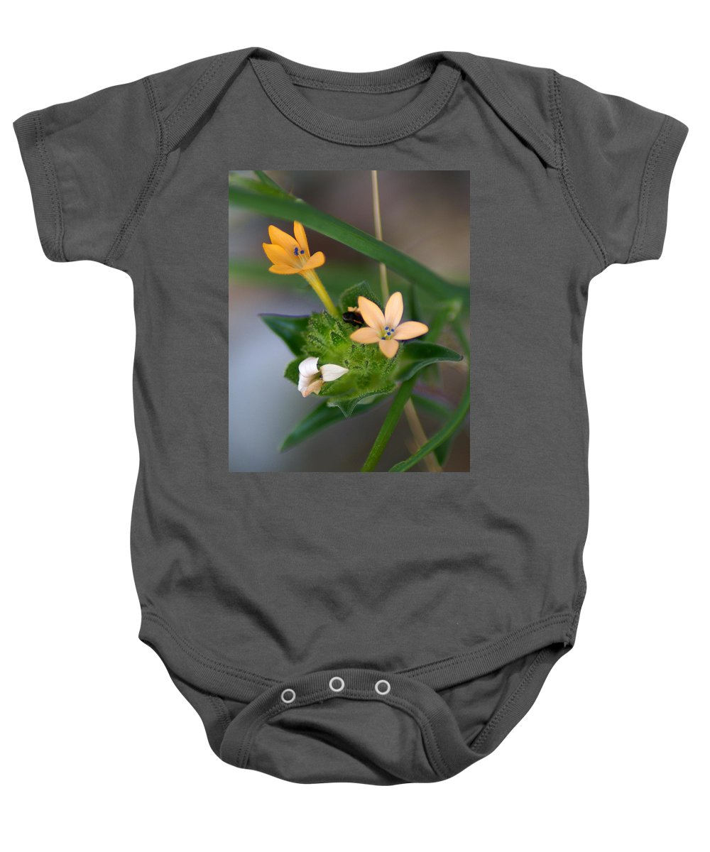 Flowers Baby Onesie featuring the photograph Tiny Flowers by Ben Upham III