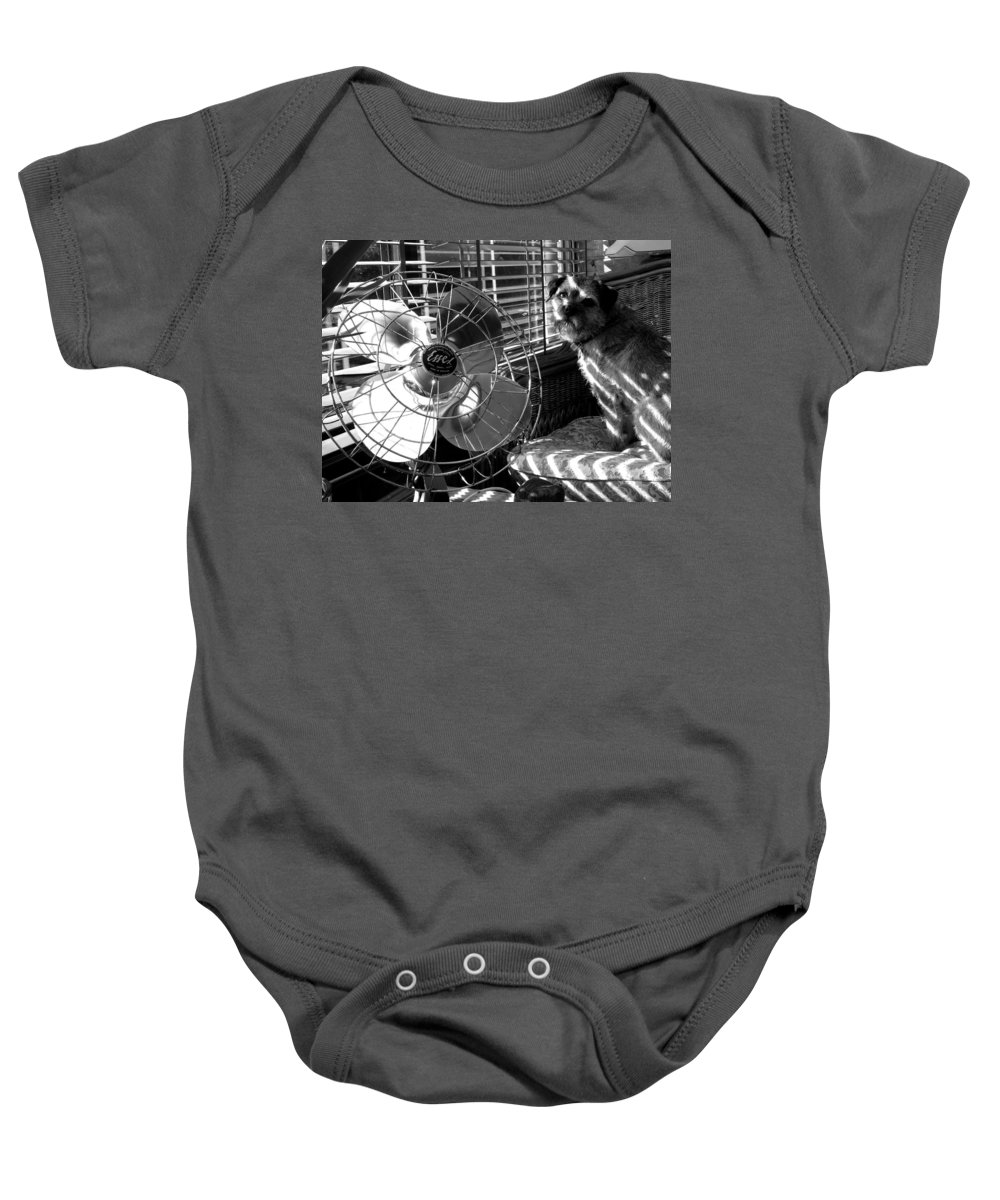 Electric Fan Baby Onesie featuring the photograph Toto Checks In by Charles Stuart