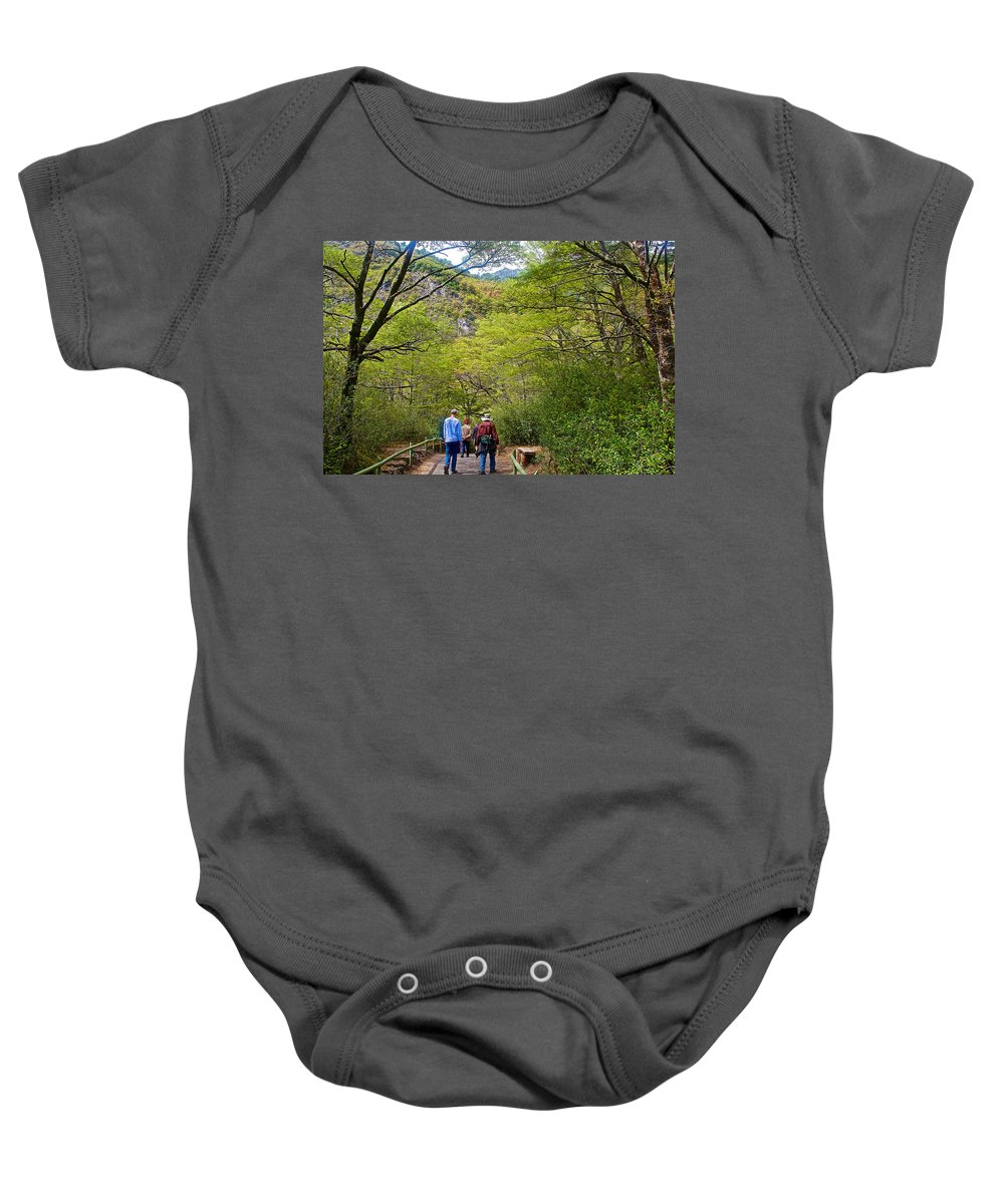 Trail To Waterfall In Vicente Perez Rosales National Park Near Puerto Montt Baby Onesie featuring the photograph Trail To Waterfall In Vicente Perez Rosales National Park Near Puerto Montt-chile by Ruth Hager