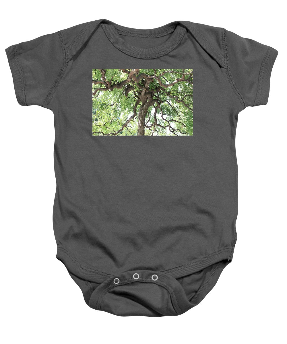 Tree Baby Onesie featuring the photograph Tree At Ming Tombs by Carol Groenen