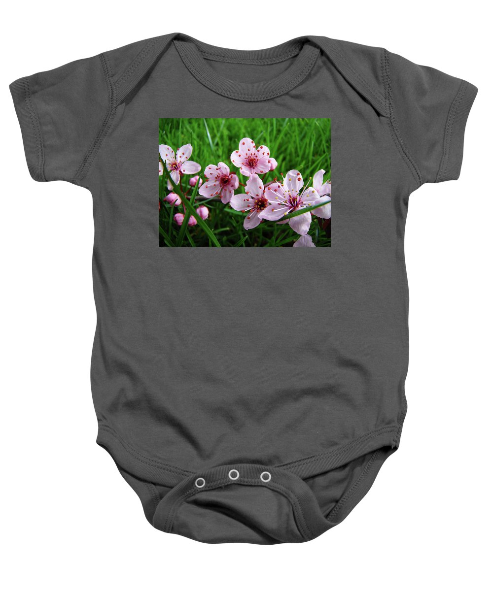 �blossoms Artwork� Baby Onesie featuring the photograph Tree Blossoms 4 Spring Flowers Art Prints Giclee Flower Blossoms by Baslee Troutman