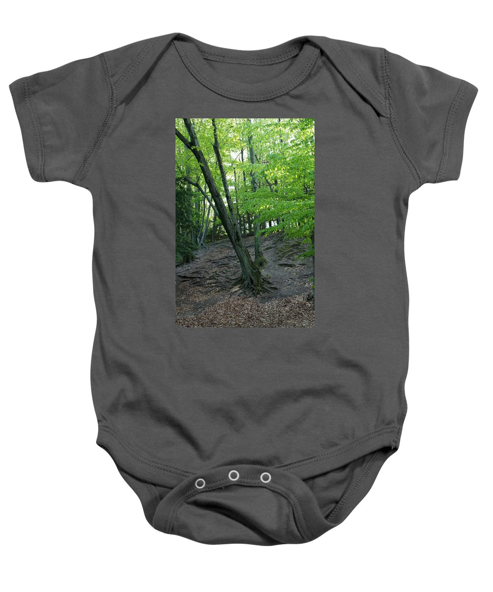 Tree Baby Onesie featuring the photograph Tree In The Woods by Linda Kerkau