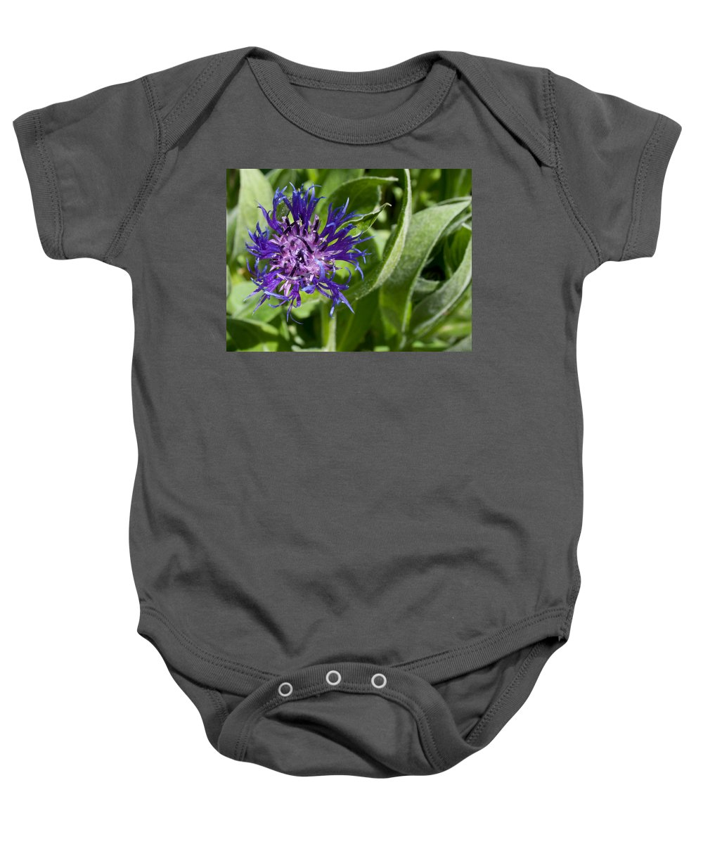 Flowers Baby Onesie featuring the photograph Truly Wild by Angus Hooper Iii