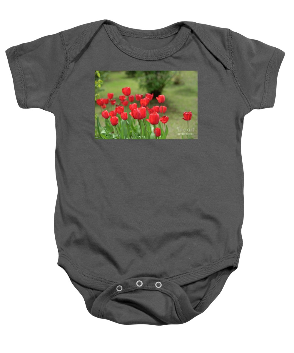 Tulips Baby Onesie featuring the photograph Tulips In Spring 3 by Deborah Brown