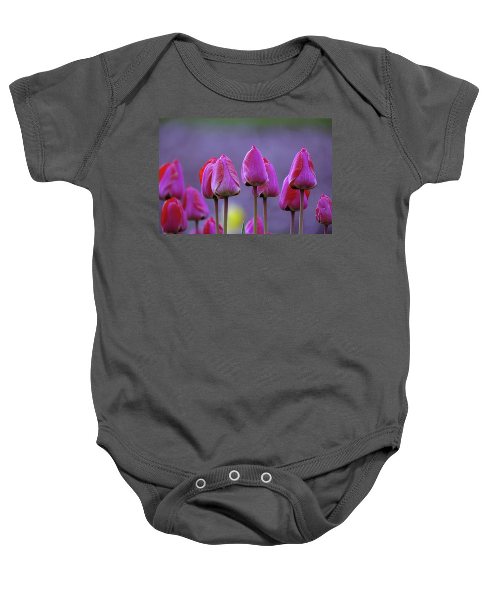 Tulips Baby Onesie featuring the photograph Tullips by Jeff Swan
