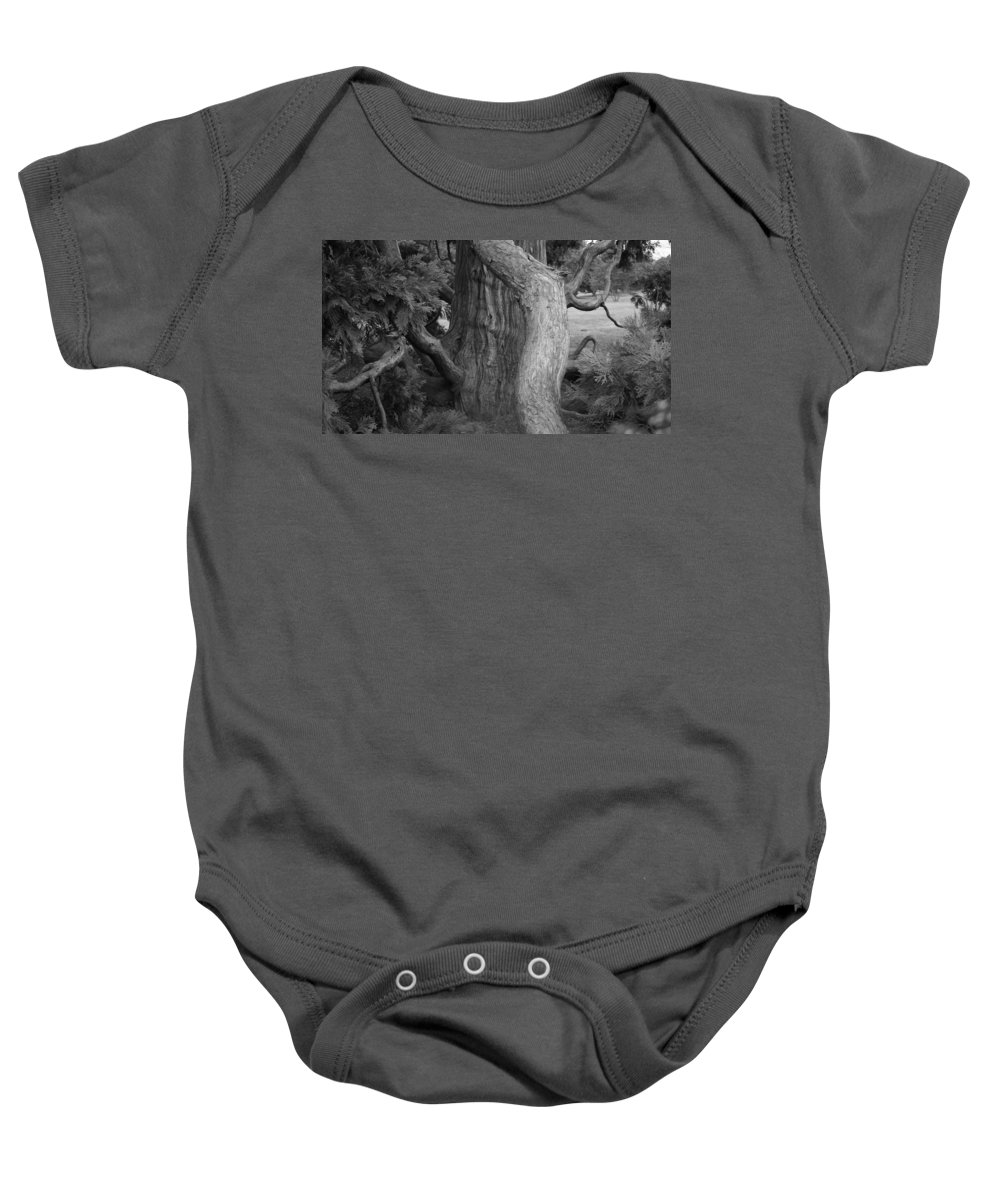 Tree Baby Onesie featuring the photograph Twisted Old Tree by Tina Meador