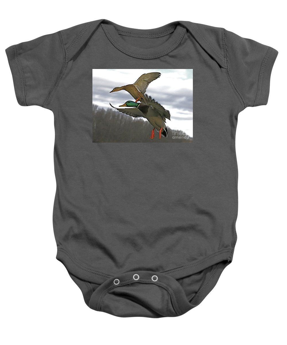 Duck Baby Onesie featuring the photograph Two Land by Robert Pearson