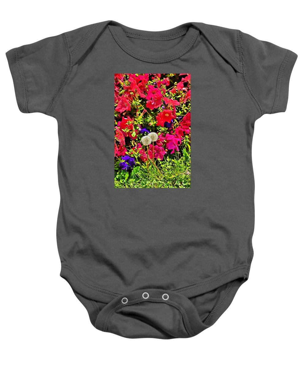 Two Of Dandelion Baby Onesie featuring the photograph Two Of Dandelion. Floral Carpet. by Andy Za