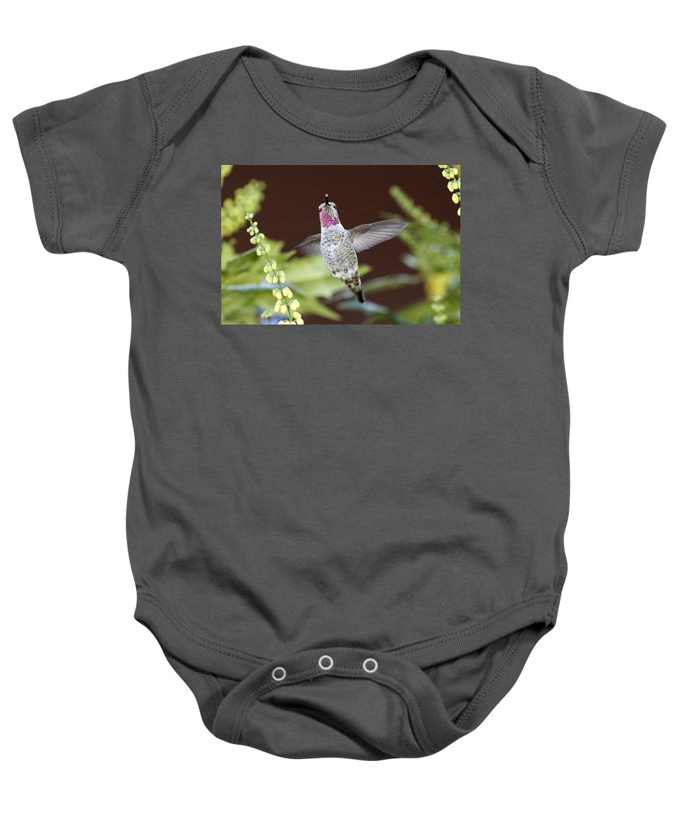 Ultra Lite Baby Onesie featuring the photograph Ultra Lite by Wes and Dotty Weber