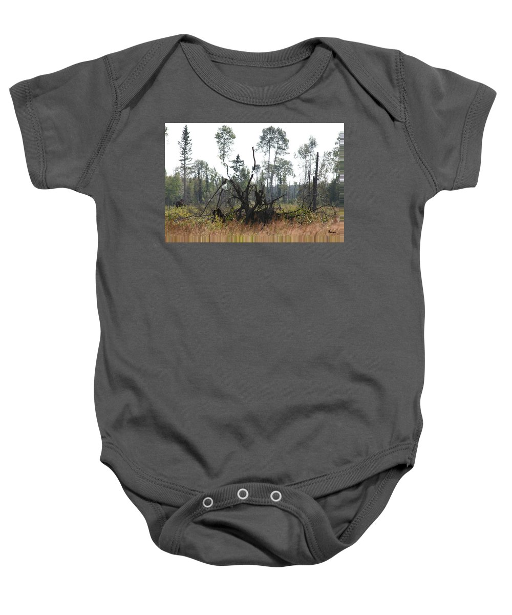 Roots Tree Stump Hawk Bird Wild Forest Nature Feeling Abstract Baby Onesie featuring the photograph Uprooted by Andrea Lawrence