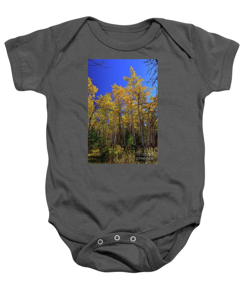 Valley Of The Five Lakes Trail Baby Onesie featuring the photograph Valley Of The Five Lakes Trail by Yefim Bam
