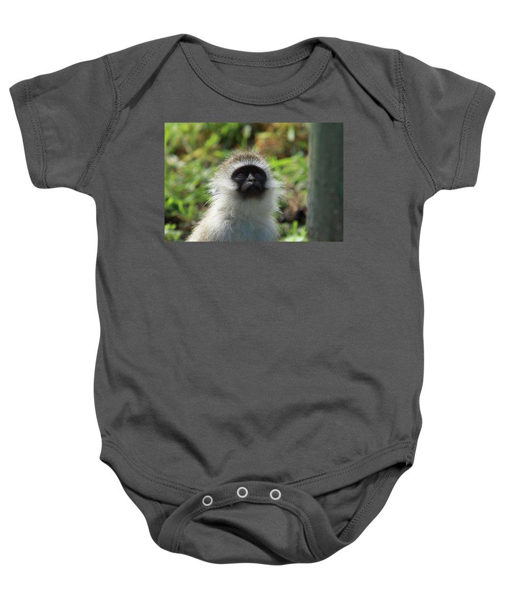 Vervet Monkey Baby Onesie featuring the photograph Vervet Monkey by Aidan Moran