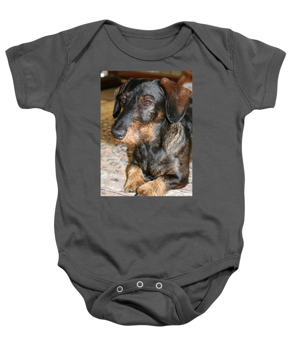 Dog Baby Onesie featuring the photograph Victor by Christiane Schulze Art And Photography